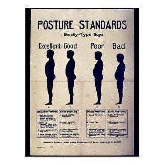 Estándares de la postura postal