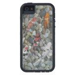 Estanque de peces de Koi iPhone 5 Case-Mate Cárcasa