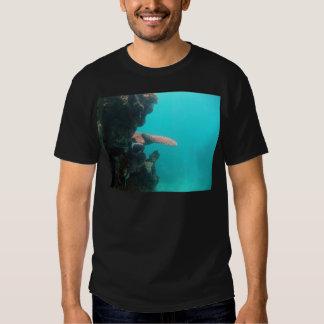 Estante coralino camisas