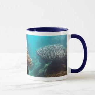 Estante coralino taza