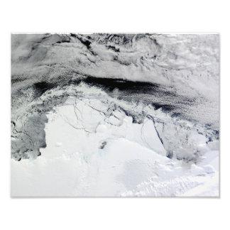 Estante de hielo de Shackleton, la Antártida Cojinete