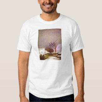 Estante im Eismeer Camisas