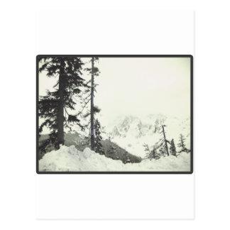 Estaría esquiando bastante postal