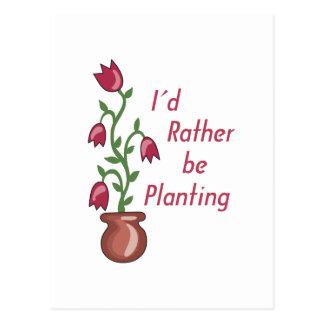 Estaría plantando bastante tarjeta postal