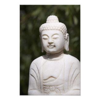 Estatua de Buda Cojinete