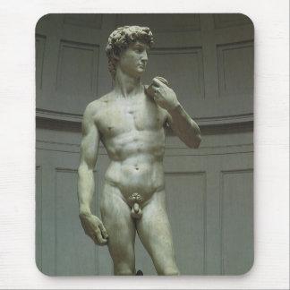 Estatua de mármol del renacimiento de David de Mig Tapetes De Ratones