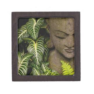 Estatua en una información de ubicación del jardín caja de recuerdo de calidad