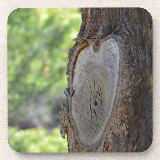 Este árbol tiene un corazón posavasos de bebida