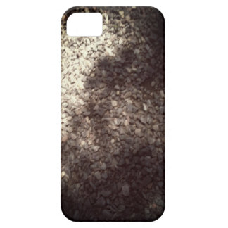 Este caso oscila iPhone 5 carcasa