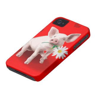 Este cerdo en caso del iPhone 4 del amor iPhone 4 Coberturas