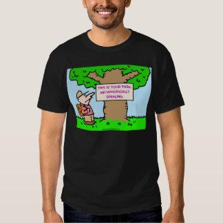 éste es su parque, metafórico hablando camisas