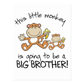 este hermano mayor del pequeño mono postales