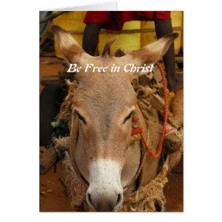 Esté libre en Cristo Tarjeta De Felicitación