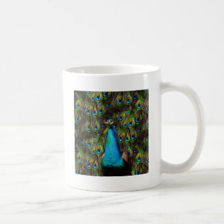 ¡Este pavo real le está mirando! Tazas De Café