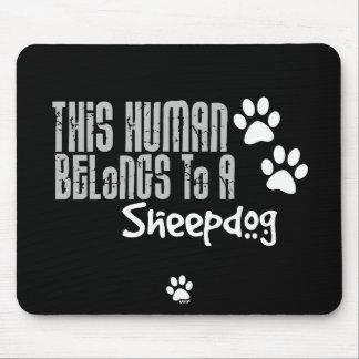 Este ser humano pertenece a un perro pastor tapetes de ratones