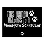 Este ser humano pertenece a un Schnauzer miniatura Postal