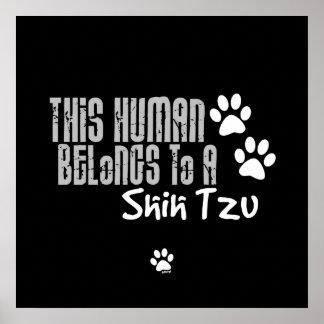 Este ser humano pertenece a un Shih Tzu Impresiones