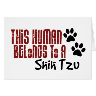 Este ser humano pertenece a un Shih Tzu Tarjeta Pequeña