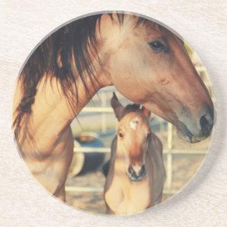 Estelle & Eclipse Drink Coaster
