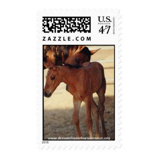 Estelle & Eclipse Postage Stamp