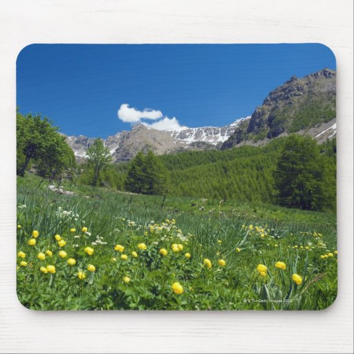 Estenc Valley  in spring French Riviera Mouse Pad