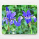 Estera azul del ratón del iris alfombrillas de ratones