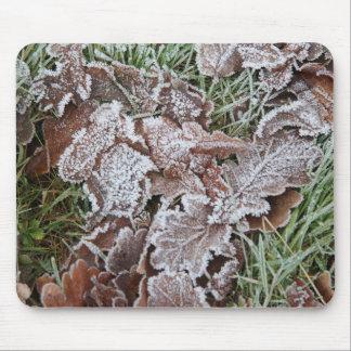 Estera del ratón con la fotografía de hojas mouse pads