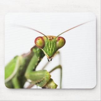 Estera del ratón de la mantis religiosa tapete de ratones