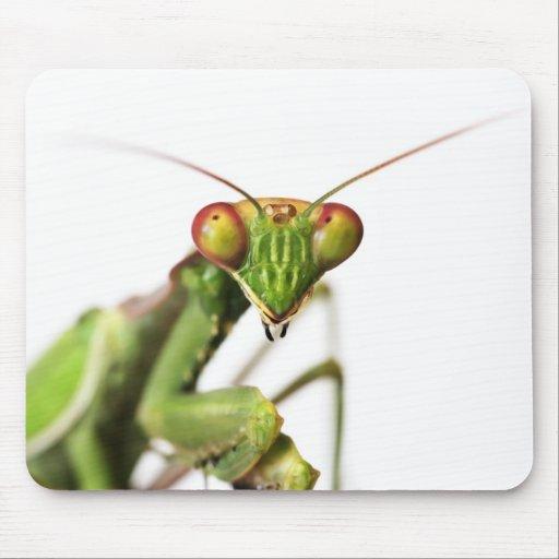 Estera del ratón de la mantis religiosa tapetes de ratones