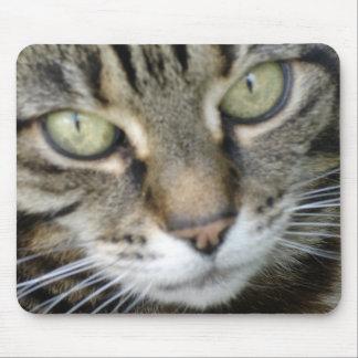 Estera del ratón del gato del brezo alfombrillas de raton