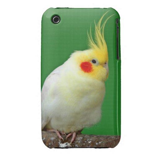 Estera hermosa del caso del iphone 3G del pájaro d Case-Mate iPhone 3 Protectores