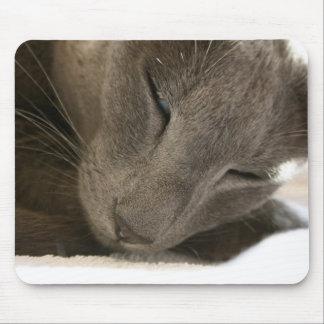 Estera oriental del ratón del gato de Shorthair Alfombrilla De Ratones