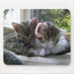 Estera soñolienta del ratón de los gatitos tapete de raton