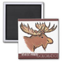 Estes Park Colorado brown theme moose magnet