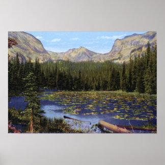 Estes Park Colorado Lily Pond Wild Basin Poster