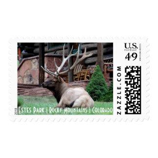 Estes Park Elk Postage Stamp