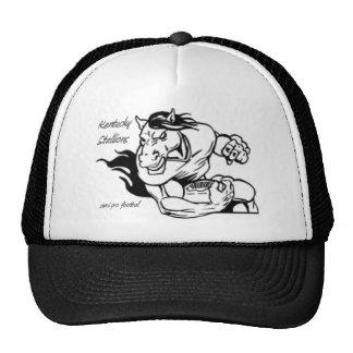 Estilo 1 del gorra del semental de KY