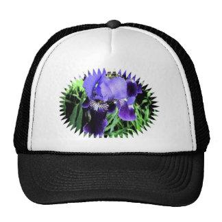 Estilo del fresco del iris gorras de camionero