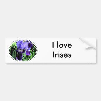 Estilo del fresco del iris pegatina para auto