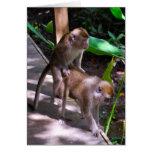 Estilo del Macaque de las estupideces de la fauna Tarjeta De Felicitación