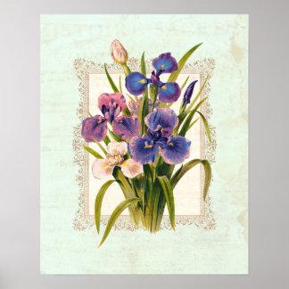 Estilo rústico del vintage de los iris japoneses póster