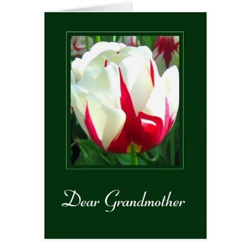 Estimada abuela - tarjeta