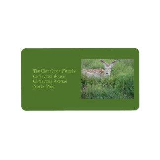 Estimado Deer Etiquetas De Dirección