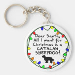 Estimado perro pastor del catalán de Santa Llaveros