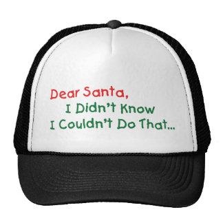 Estimado Santa, no sabía Gorros Bordados