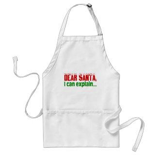 Estimado Santa, puedo explicar Delantal
