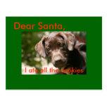 Estimado Santa, yo comí todas las galletas Postales