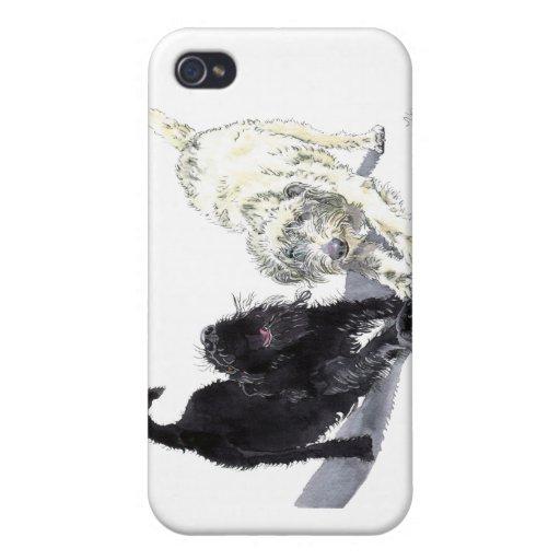 Estiramiento de Labradoodle iPhone 4 Carcasa