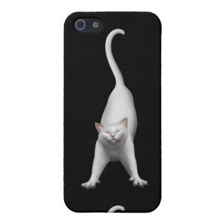 Estirar la caja blanca del iPhone del gato iPhone 5 Carcasa