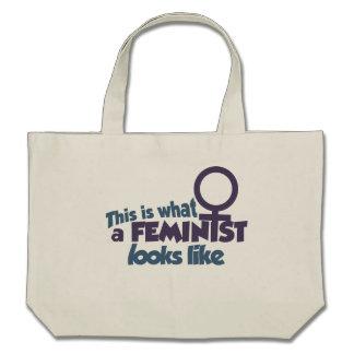 Esto es lo que parece una feminista bolsa